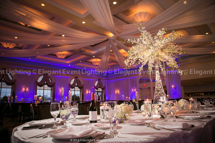 Terra john s wedding at venuti s elegant event for Ball room decoration