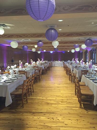 Kristine & Tim's Brookfield Zoo Wedding | August 15th, 2015Elegant ...