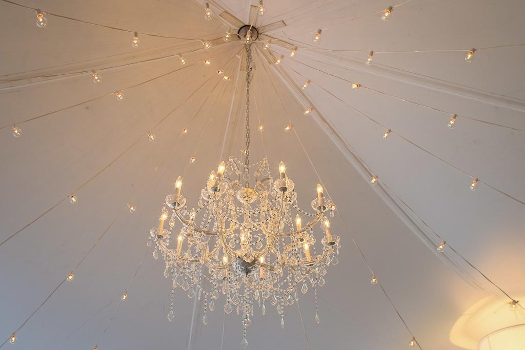 Elegant_Event_Lighting_Chicago_Botanic_Gardens_Wedding_Crystal_Chandelier