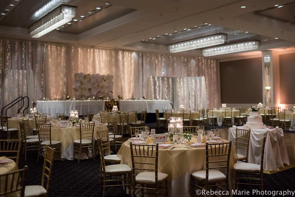 Elegant_Event_Lighting_Hotel_Arista_Naperville_Chicago_Wedding_Fairy_Light_Backdrop