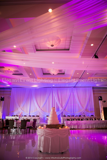 Venutis_Wedding_Backdrop_Blue-2
