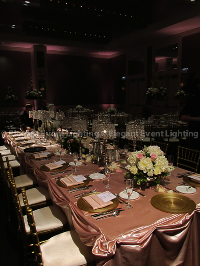 Hotel Arista Head Table Uplighting
