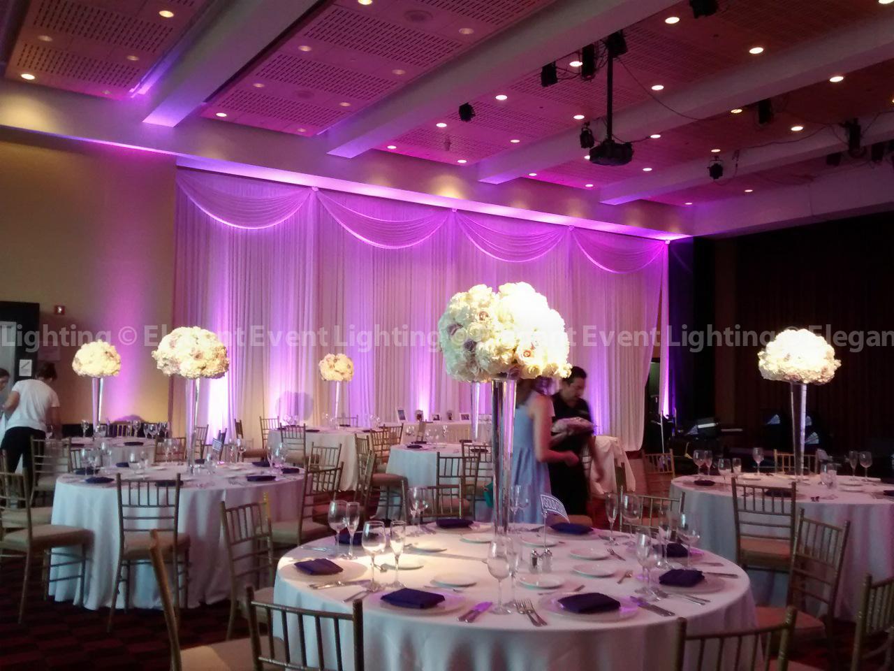 National Floral Design Day Elegant Event Lighting