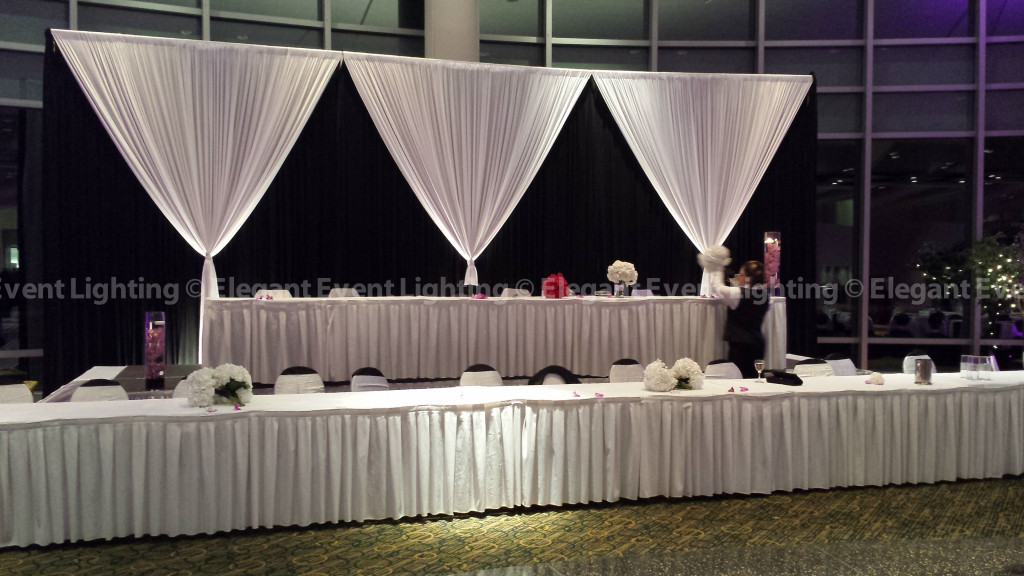 Esplanade Lakes by Doubletree | Head Table Backdrop