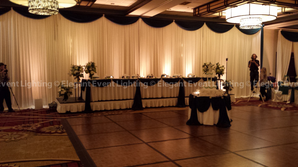 Embassy Suites O'Hare | Head Table Backdrop