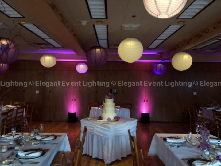 Paper Lanterns & Lavender Uplighting | Brookfield Zoo