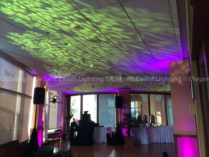Vibrant Purple LED Uplighting & Green Pattern Lighting | Brookfield Zoo