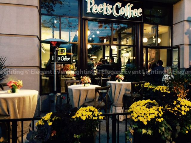 Pin Spot Lighting | Peet's Coffee Grand Opening