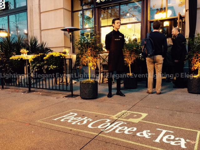 Custom Illuminated Monogram | Peet's Coffee Grand Opening