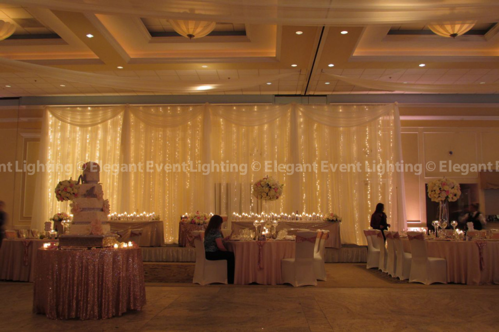 Fairy Light Backdrop | Venuti's