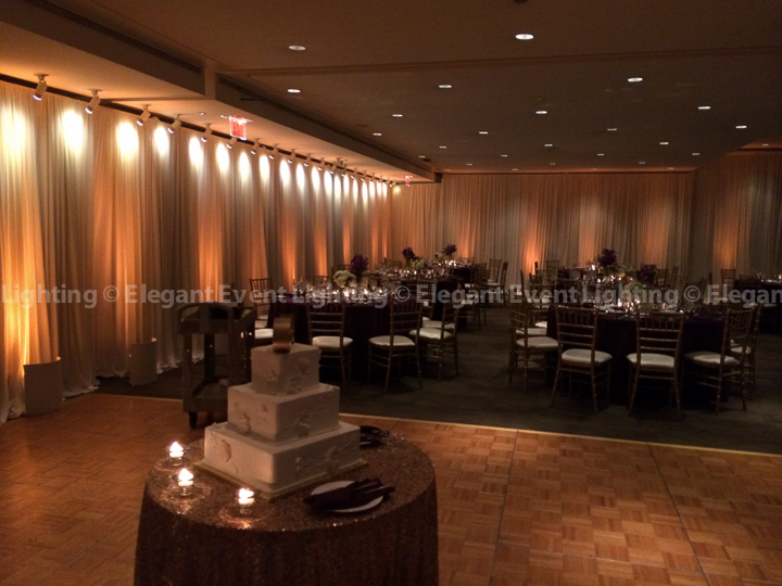 Ivory Drape Wall & Warm Amber Uplighting | Gingko Room - The Morton Arboretum