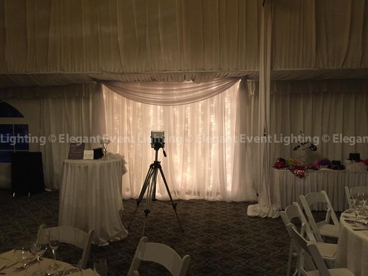 Fairy Light Photo Backdrop | Hilton Oak Brook Hills Resort