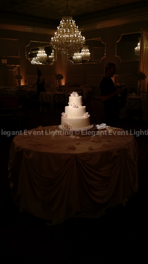 Pin Spot Wedding Cake Lighting | Crystal Ballroom - Drury Lane