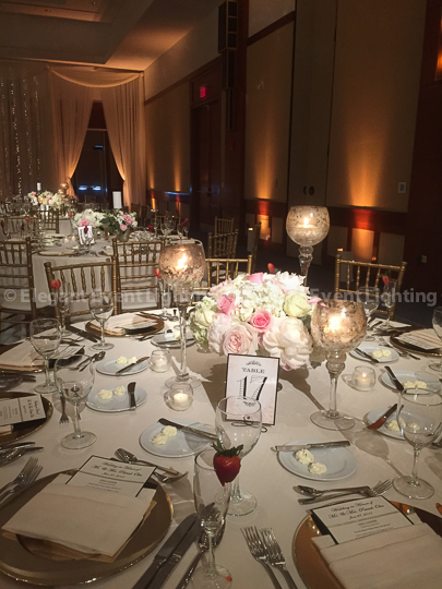 Pin Spot Flower Lighting | Red Oak Ballroom - Eaglewood Resort & Spa