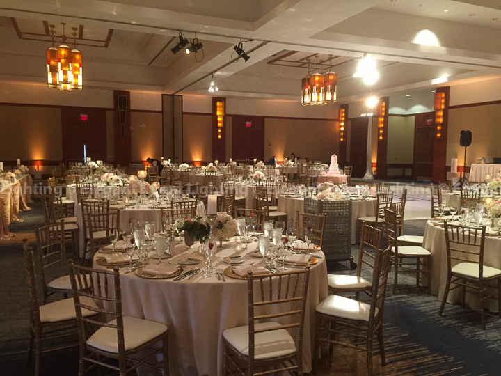 Amber Room Uplighting & Pin Spot Flower Lighting | Red Oak Ballroom - Eaglewood Resort & Spa