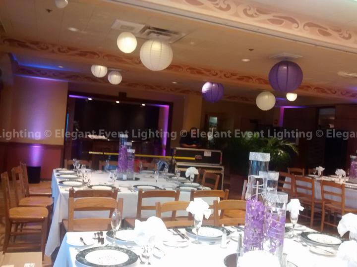 Illuminated Paper Lanterns & Uplighting | Brookfield Zoo