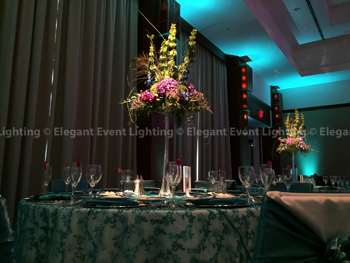 Pin Spot Lighting | Eaglewood Resort & Spa