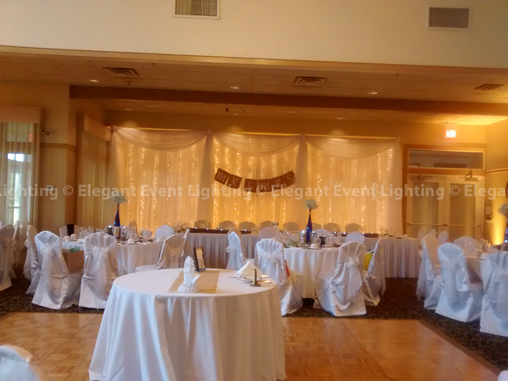 Fairy Light Head Table Backdrop | White Deer Run Golf Course