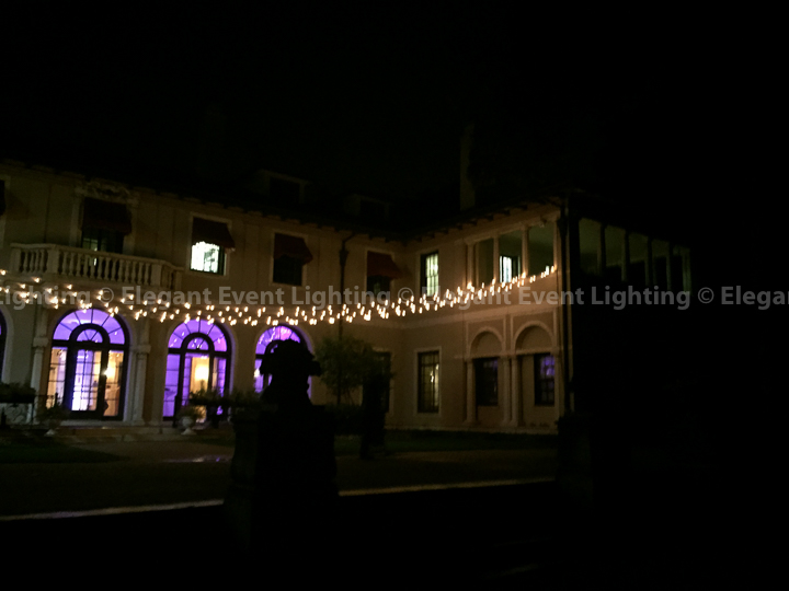 Cafe Globe Lighting & Purple Uplighting | Armour House