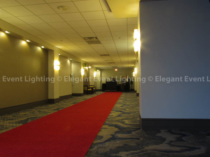 Red Carpet Runway | Hilton Oak Brook Hills