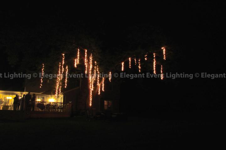 Fairy Lights   EEL Chicago Wedding