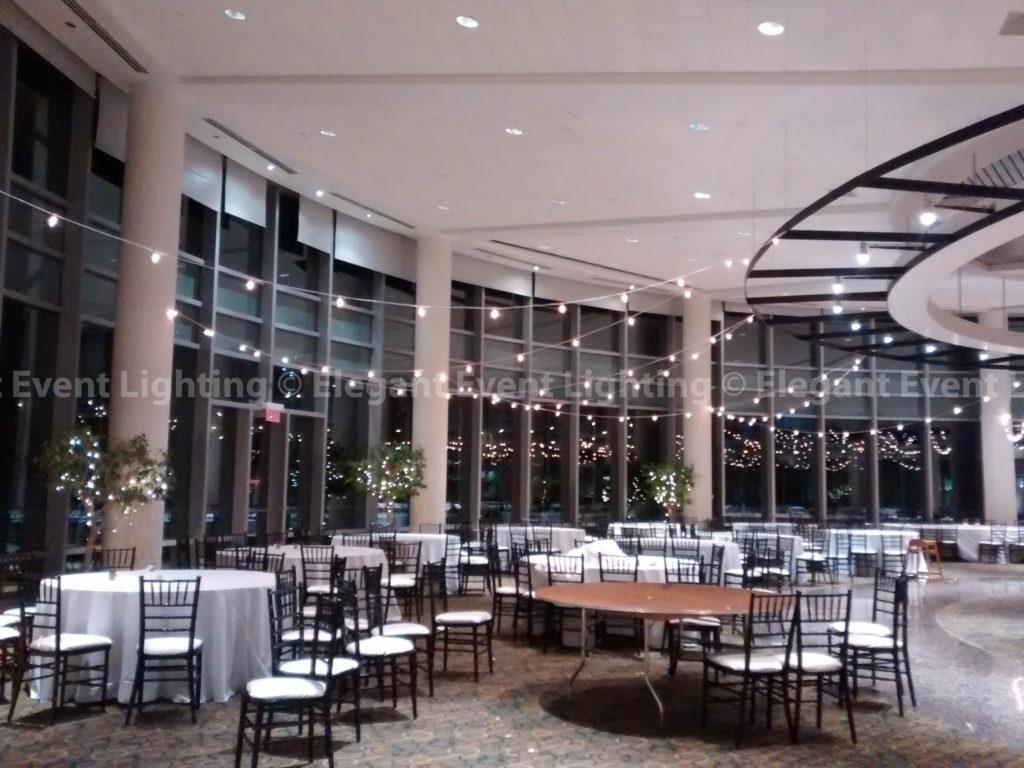 Cafe Globe Lights   Esplanade Lakes