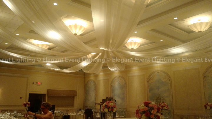 Starburst Ceiling Canopy | Venuti's