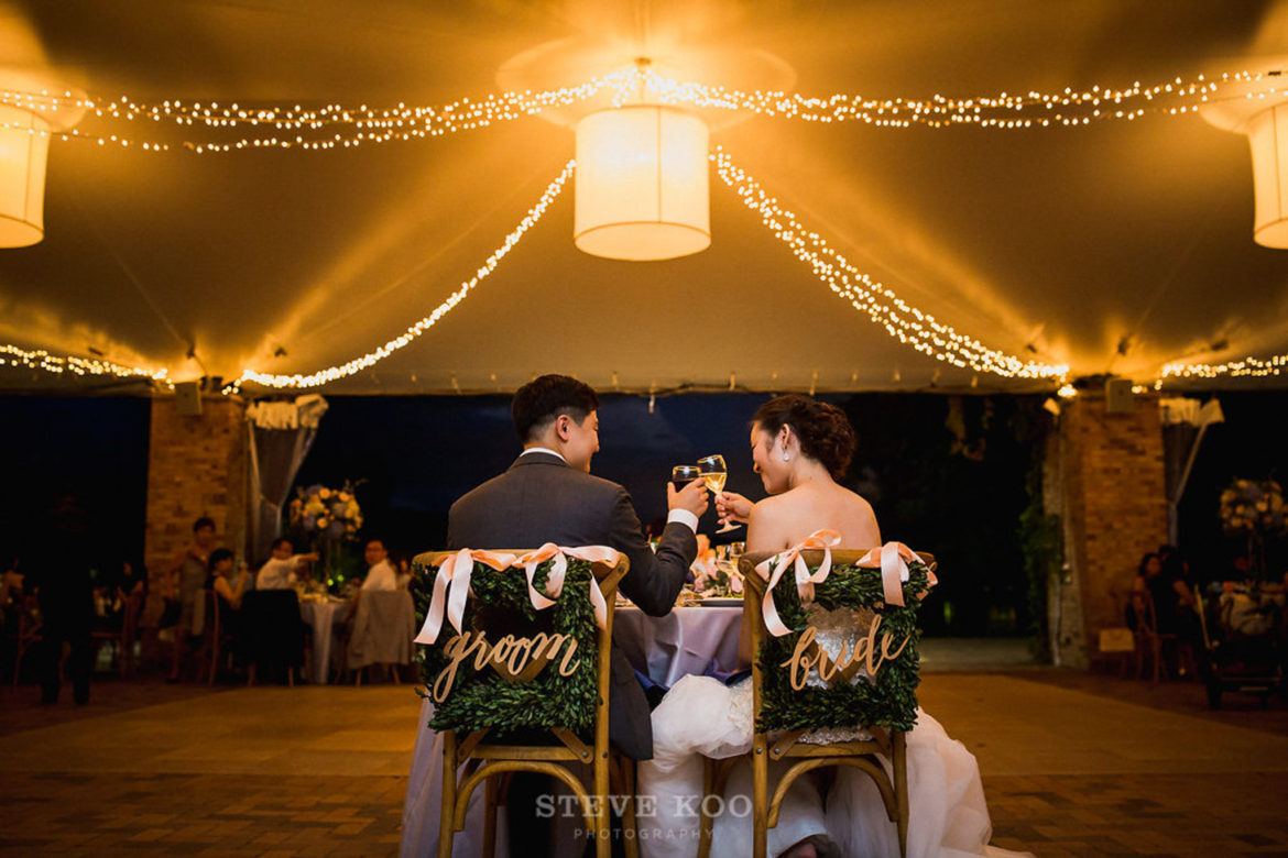 Elegant_Event_Lighting_Chicago_Botanic_Gardens_Wedding_Twinkle_String_Lighting