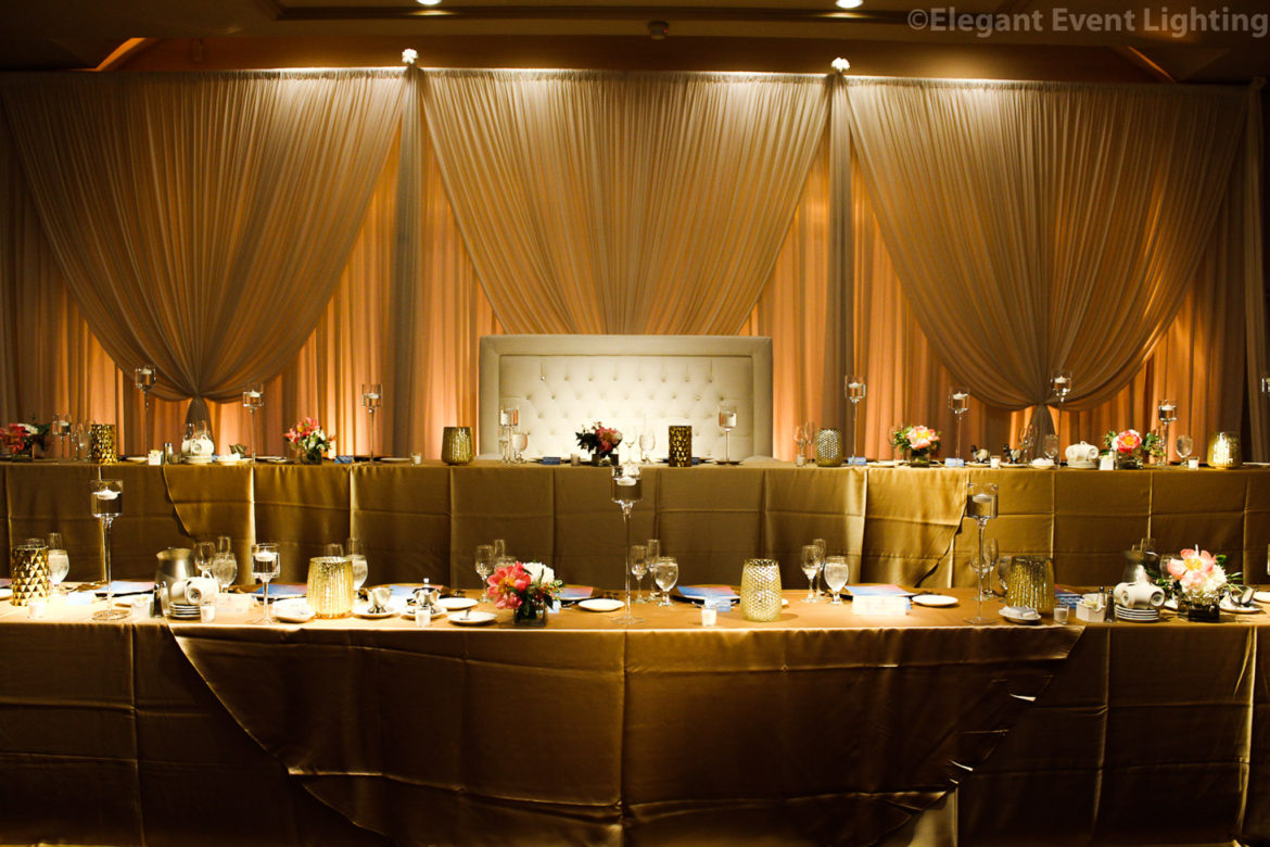 Elegant_Event_Lighting_Chicago_Carlisle_Wedding_Amber_Uplighting_Ivory_Backdrop_Loveseat