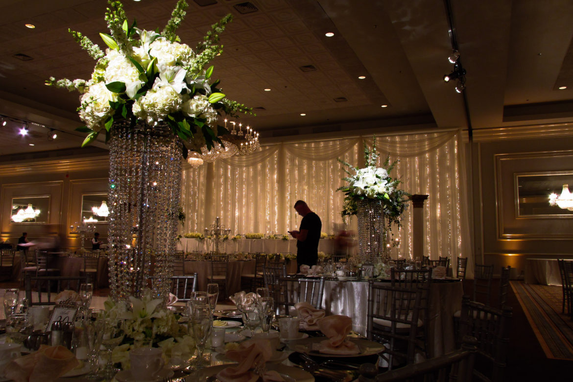 Elegant_Event_Lighting_Chicago_Drury_Lane_Oak_Brook_Wedding_Twinkle_Lights_Backdrop_-Flower_Lighting