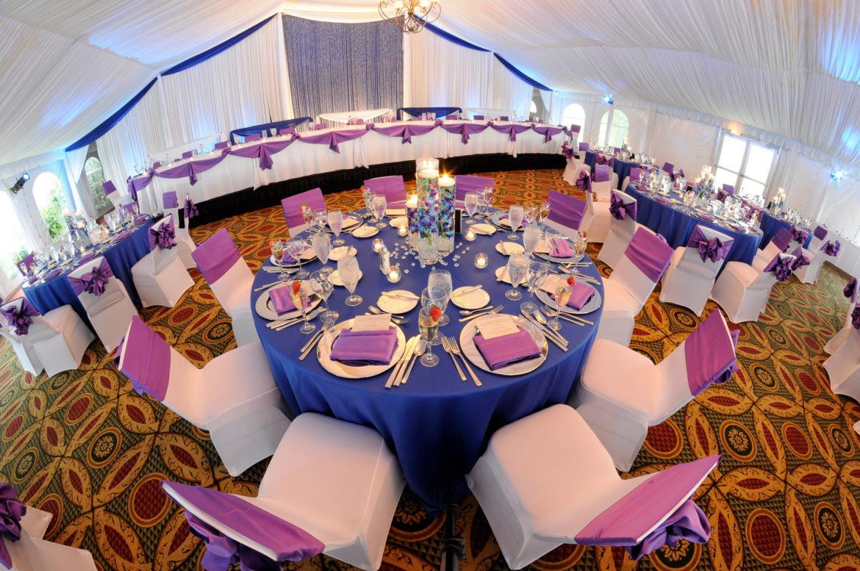Elegant_Event_Lighting_Chicago_Eaglewood_Resort_Spa_Itasca_Wedding_Reception_Draping_Crystal_Curtains_White_Blue_Backdrop