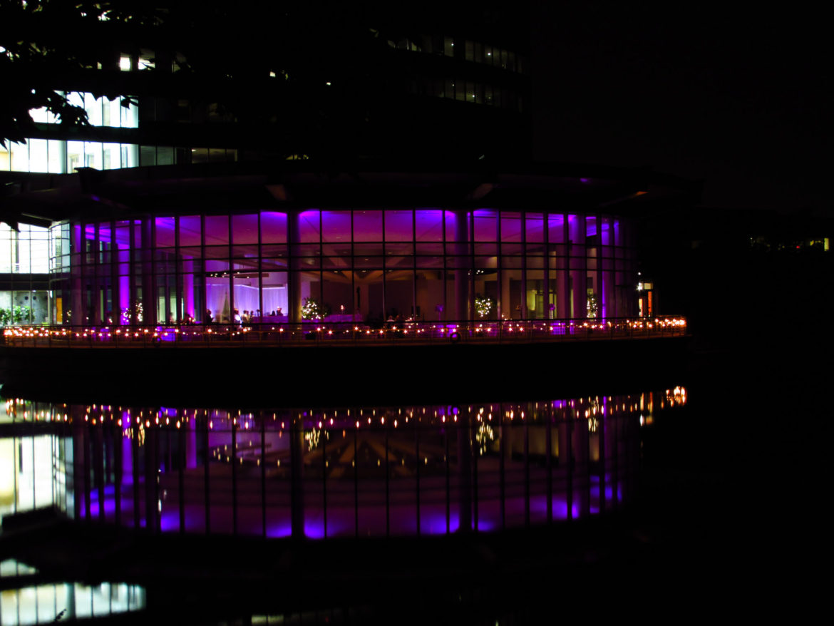Elegant_Event_Lighting_Chicago_Esplanade_Lakes_Double_Tree_Downers_Grove_Wedding_Cafe_Globe_String_Lighting_Purple_LED_Uplighting