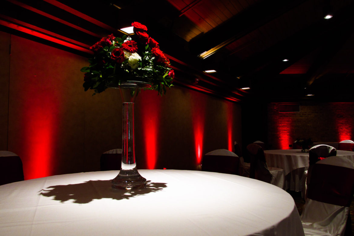 Elegant_Event_Lighting_Chicago_Indian-Lakes_Bloomingdale_Wedding_Red_LED_Uplighting