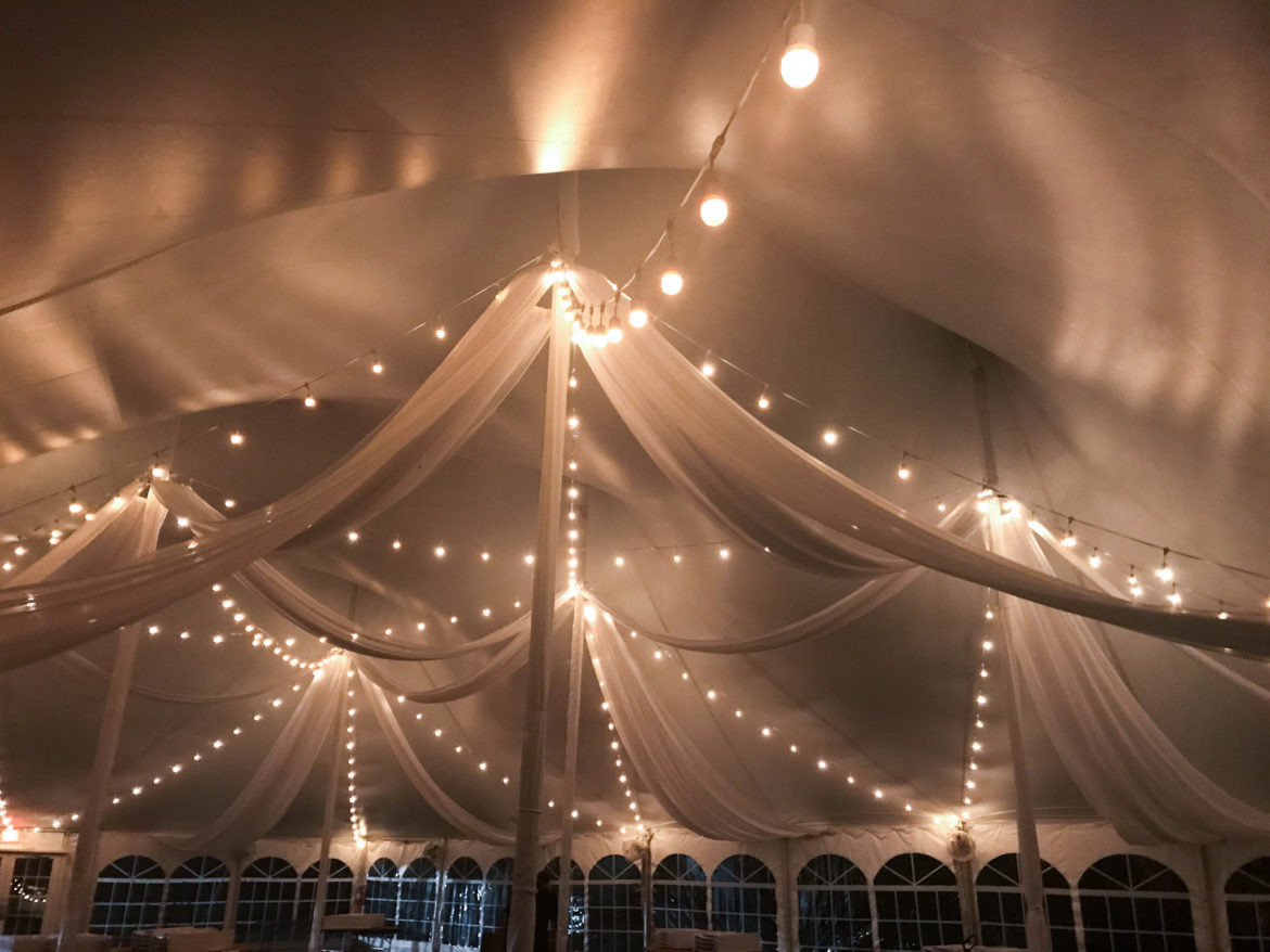 Elegant_Event_Lighting_Chicago_Morton_Arboretum_Lisle_Wedding_Ceiling_Drapes_Cafe_Globe_Lights_Pavilion