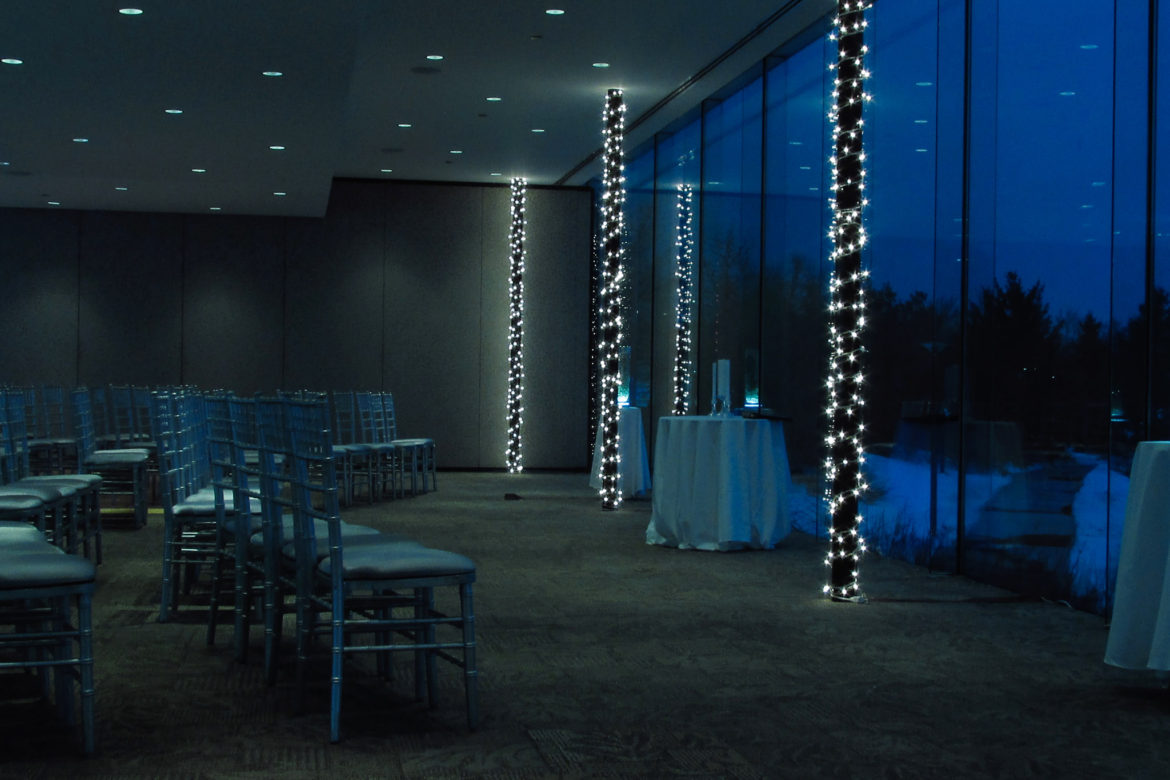 Elegant_Event_Lighting_Chicago_The_Morton_Arboretum_Lisle_Ginko_Room__Wedding_Twinkle_Lighting_columns
