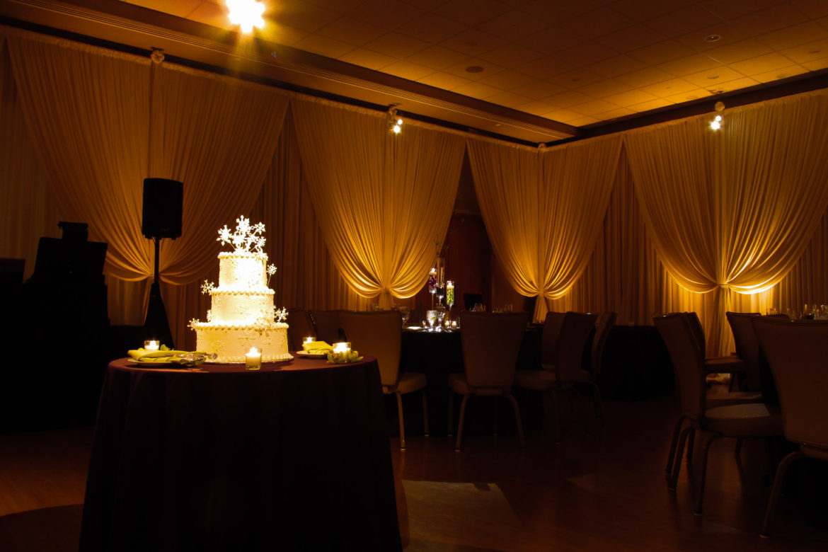 Elegant_Event_Lighting_Chicago_The_Morton_Arboretum_Lisle_Thornhill_Wedding_Amber_LED_Uplighting_Cake_Lighting