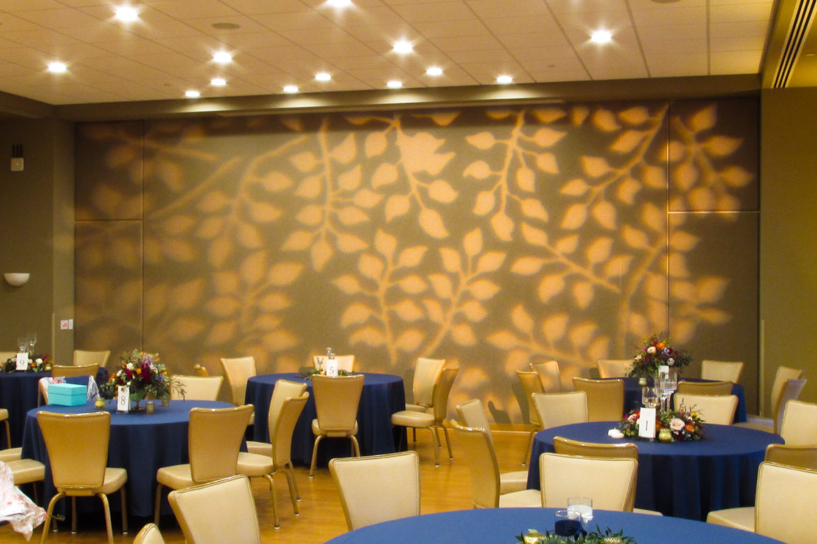 Elegant_Event_Lighting_Chicago_The_Morton_Arboretum_Lisle_Thornhill_Wedding_Pattern_Lighting