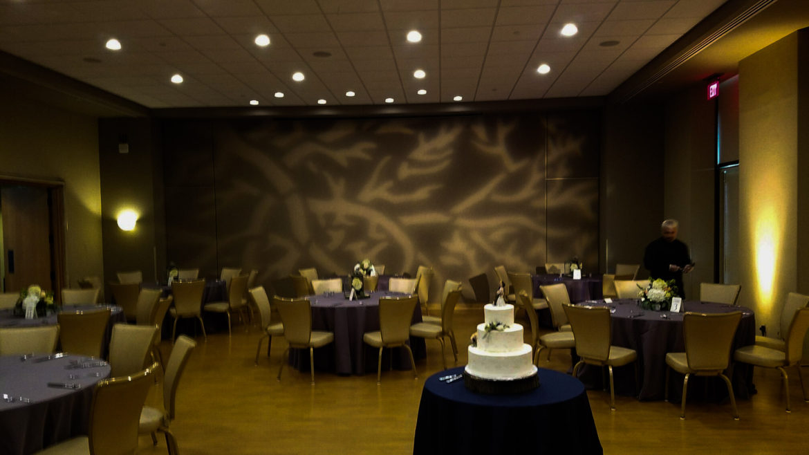 Elegant_Event_Lighting_Chicago_The_Morton_Arboretum_Lisle_Thornhill_Wedding_Pattern_Wall_Lighting