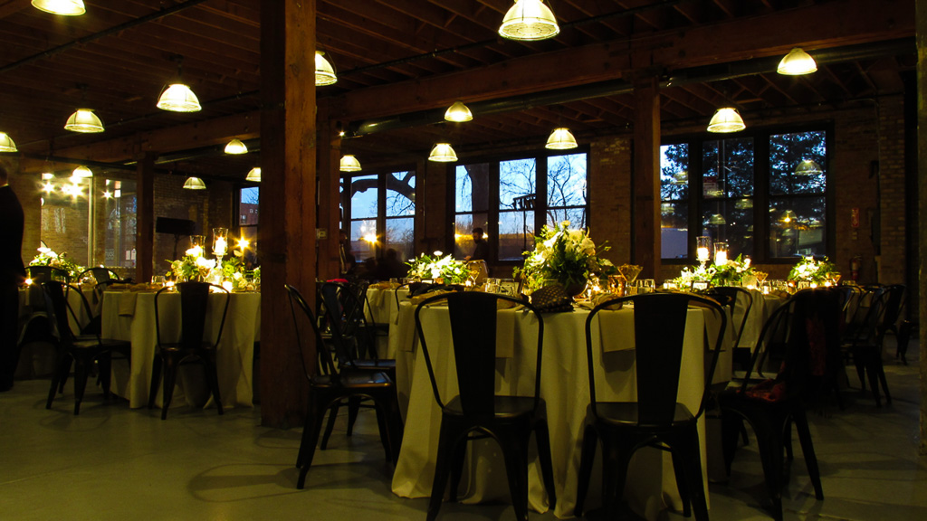 Elegant_Event_Lighting_Chicago_Wedding_Flower_Lighting_PIn_Beam